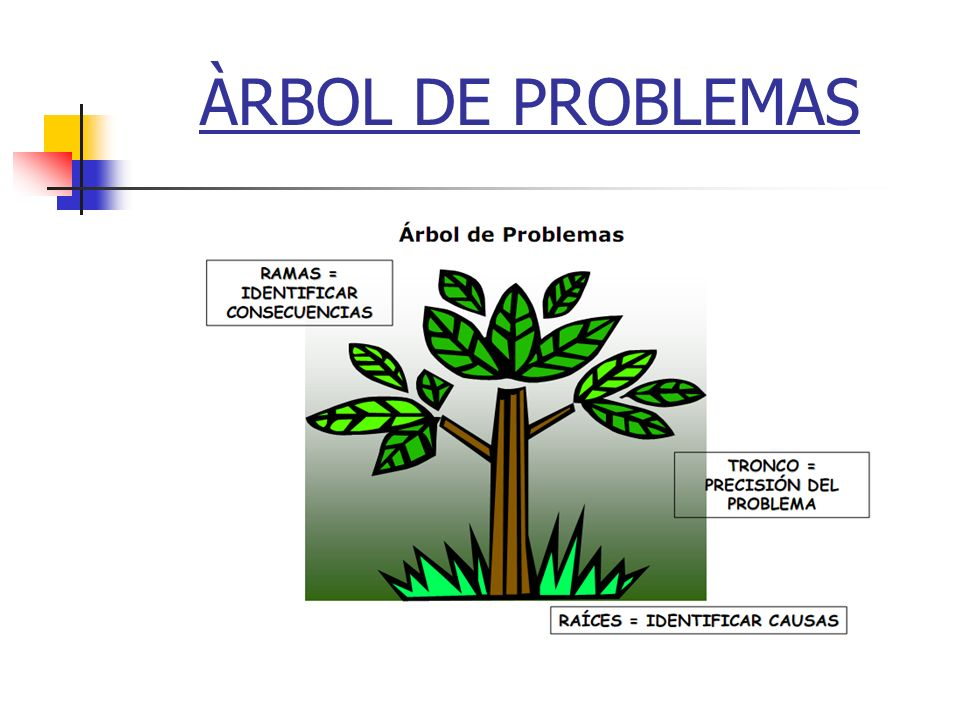 ÀRBOL DE PROBLEMAS