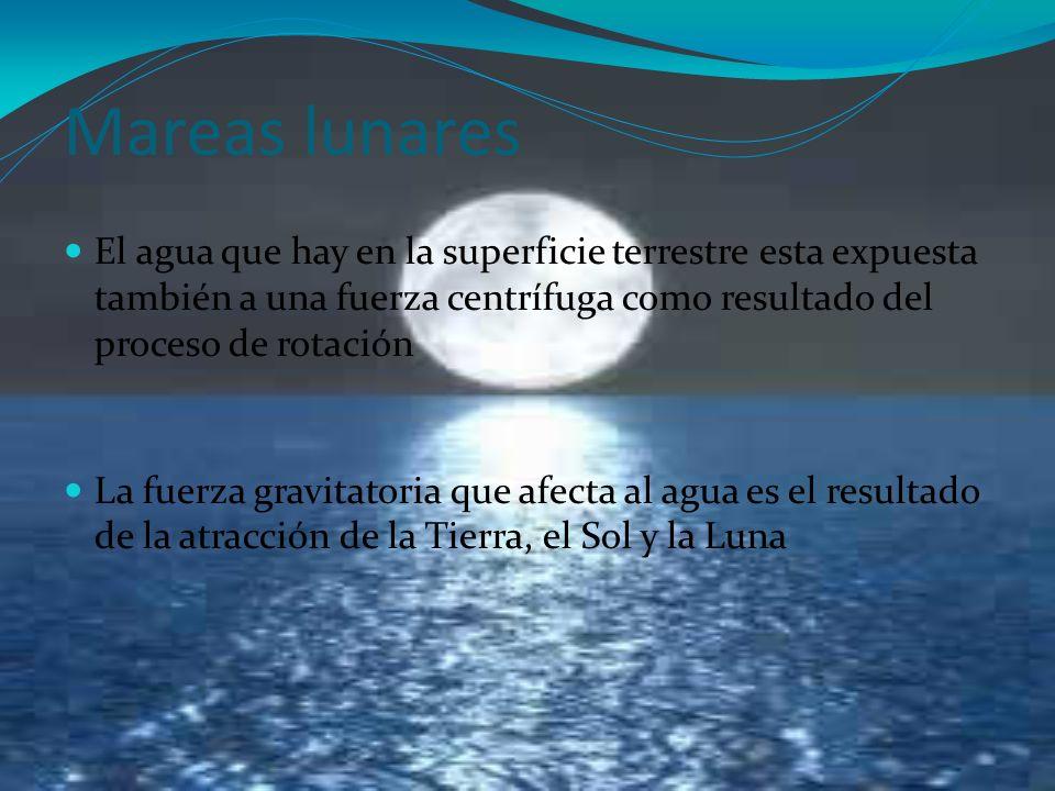 Mareas lunares El agua que hay en la superficie terrestre esta expuesta también a una fuerza centrífuga como resultado del proceso de rotación La fuer