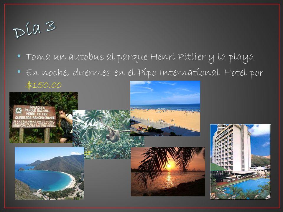 Toma un autobus al parque Henri Pitlier y la playa En noche, duermes en el Pipo International Hotel por $150.00
