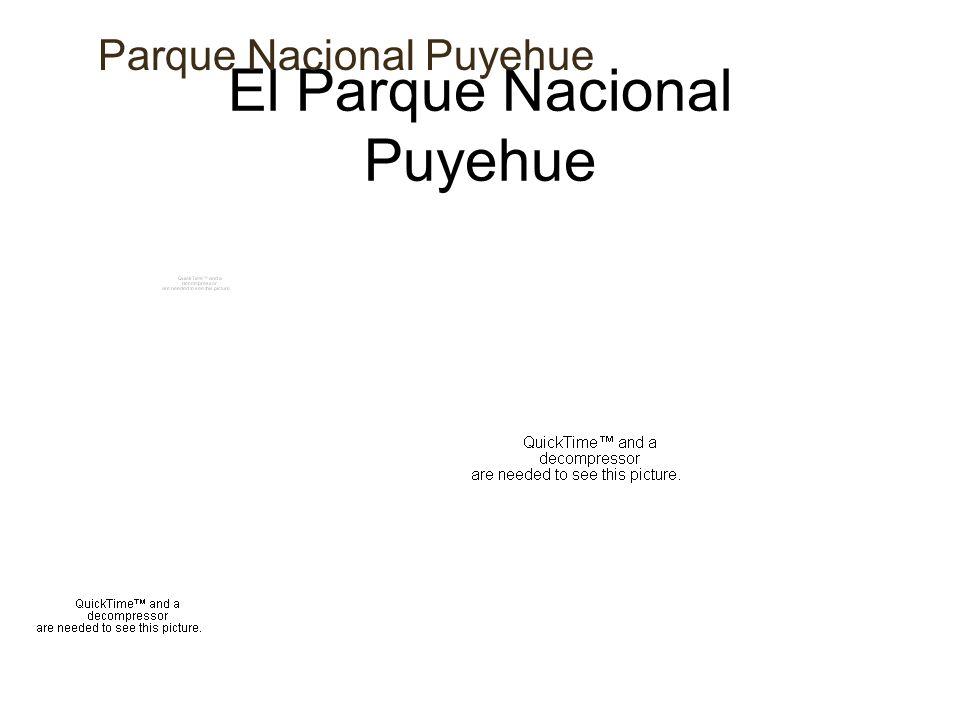 El Parque Nacional Puyehue Parque Nacional Puyehue