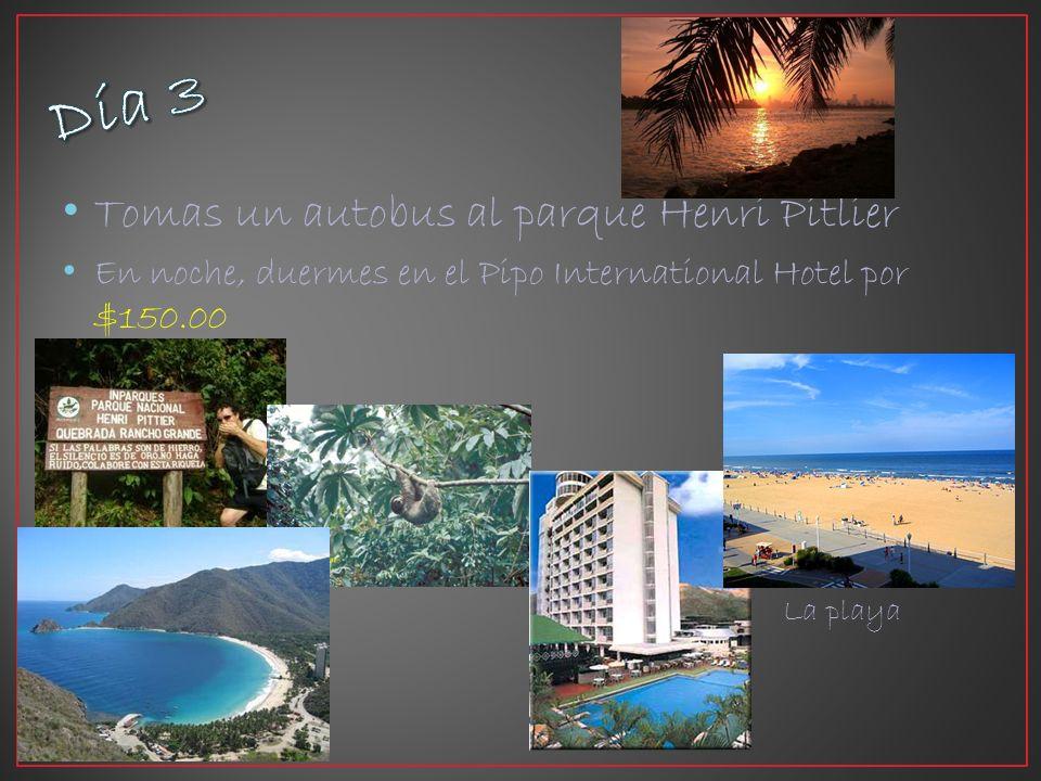 Tomas un autobus al parque Henri Pitlier En noche, duermes en el Pipo International Hotel por $150.00 La playa