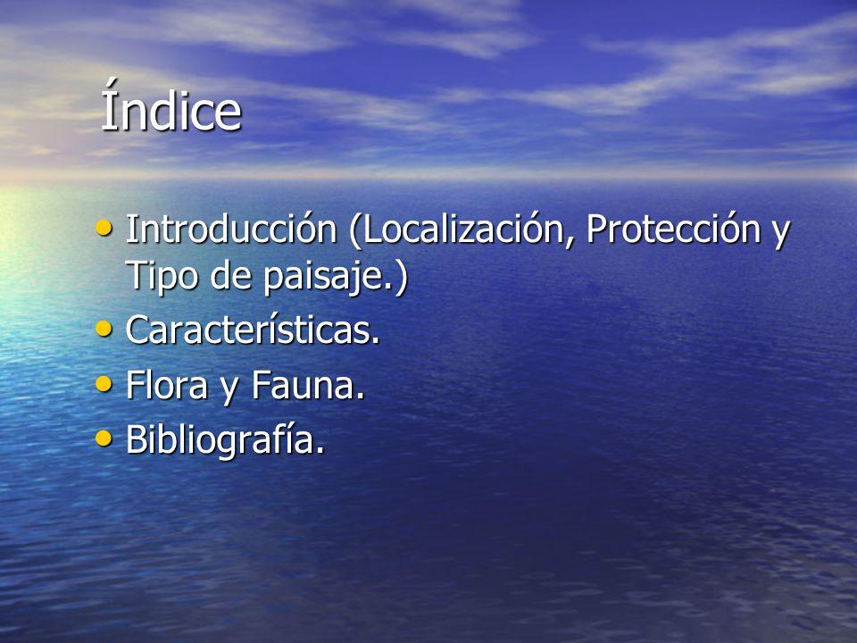 Índice Introducción (Localización, Protección y Tipo de paisaje.) Introducción (Localización, Protección y Tipo de paisaje.) Características. Caracter