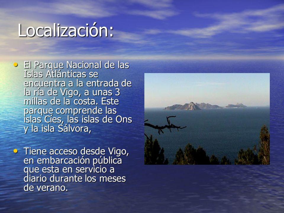 Localización: El Parque Nacional de las Islas Atlánticas se encuentra a la entrada de la ría de Vigo, a unas 3 millas de la costa. Este parque compren