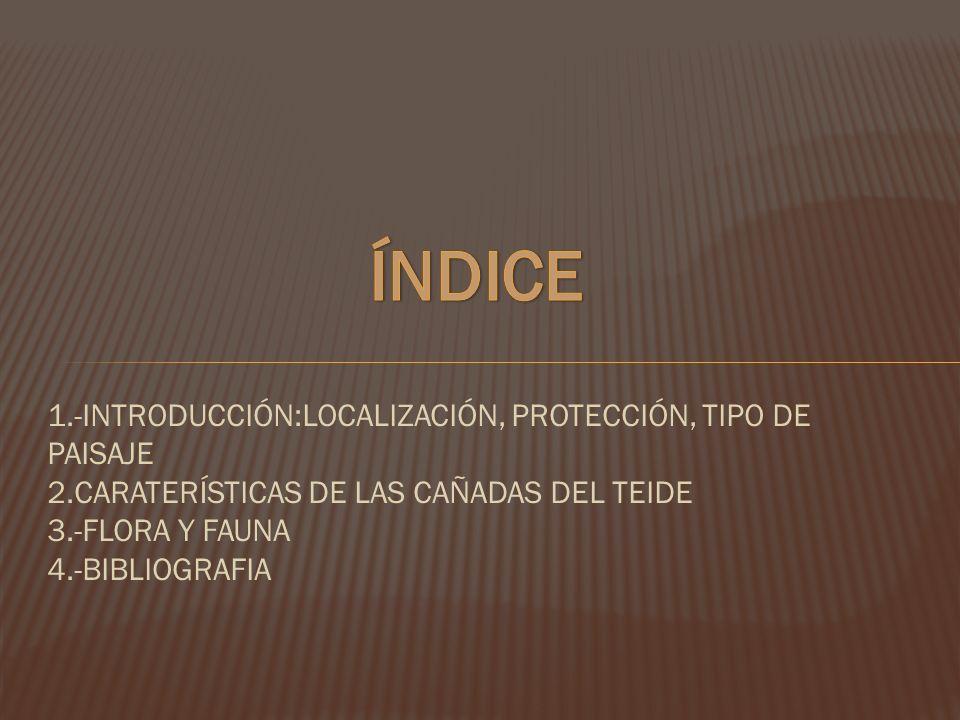 1.-INTRODUCCIÓN:LOCALIZACIÓN, PROTECCIÓN, TIPO DE PAISAJE 2.CARATERÍSTICAS DE LAS CAÑADAS DEL TEIDE 3.-FLORA Y FAUNA 4.-BIBLIOGRAFIA
