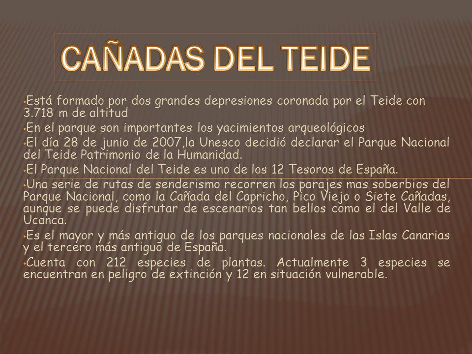 Está formado por dos grandes depresiones coronada por el Teide con 3.718 m de altitud En el parque son importantes los yacimientos arqueológicos El dí