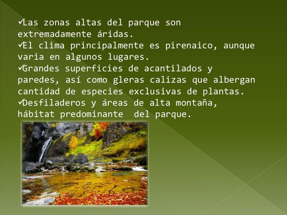 Las zonas altas del parque son extremadamente áridas. El clima principalmente es pirenaico, aunque varia en algunos lugares. Grandes superficies de ac