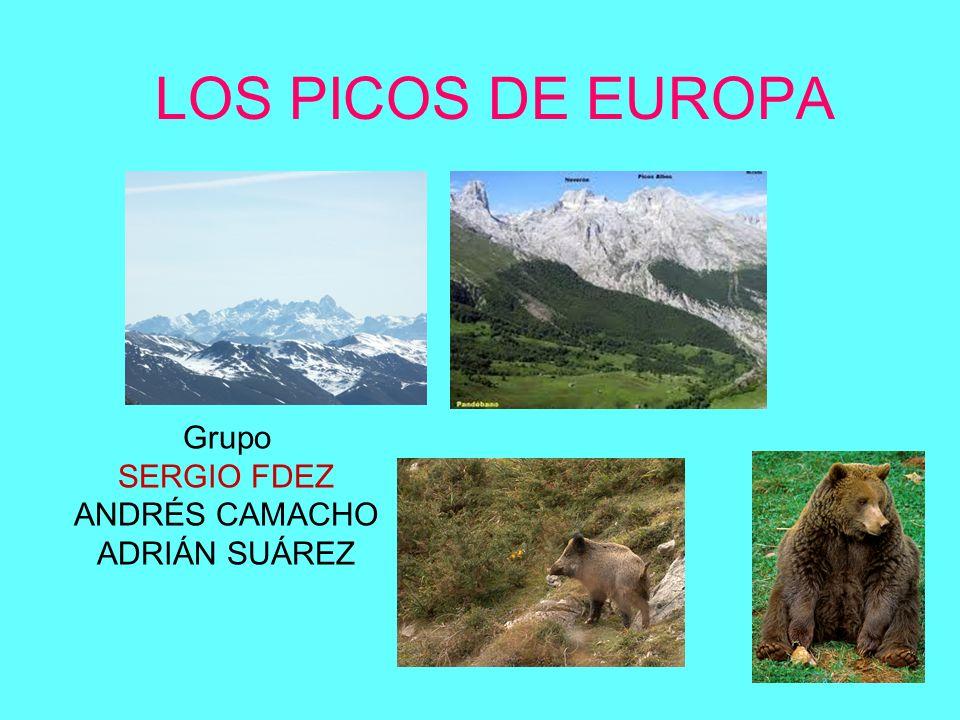 LOS PICOS DE EUROPA Grupo SERGIO FDEZ ANDRÉS CAMACHO ADRIÁN SUÁREZ