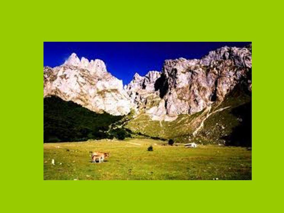Tipo de paisaje Es bastante elevado, con una altitud media de 660m.