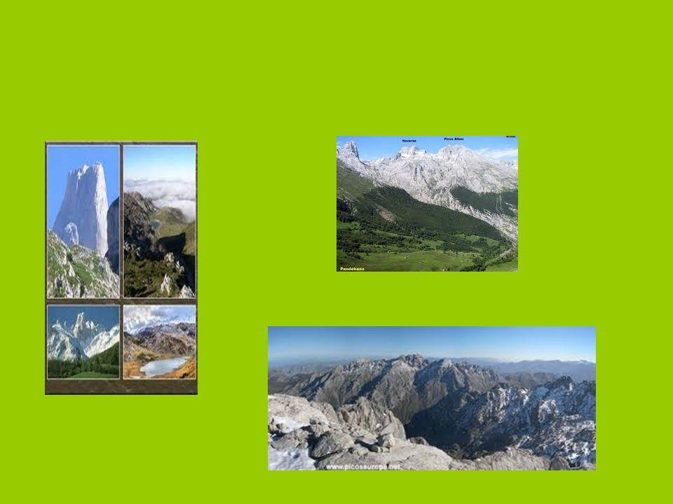 Características de los Picos de Europa El Parque Nacional de Picos de Europa,es atravesado por varios ríos,siendo el Cares y el Duje.