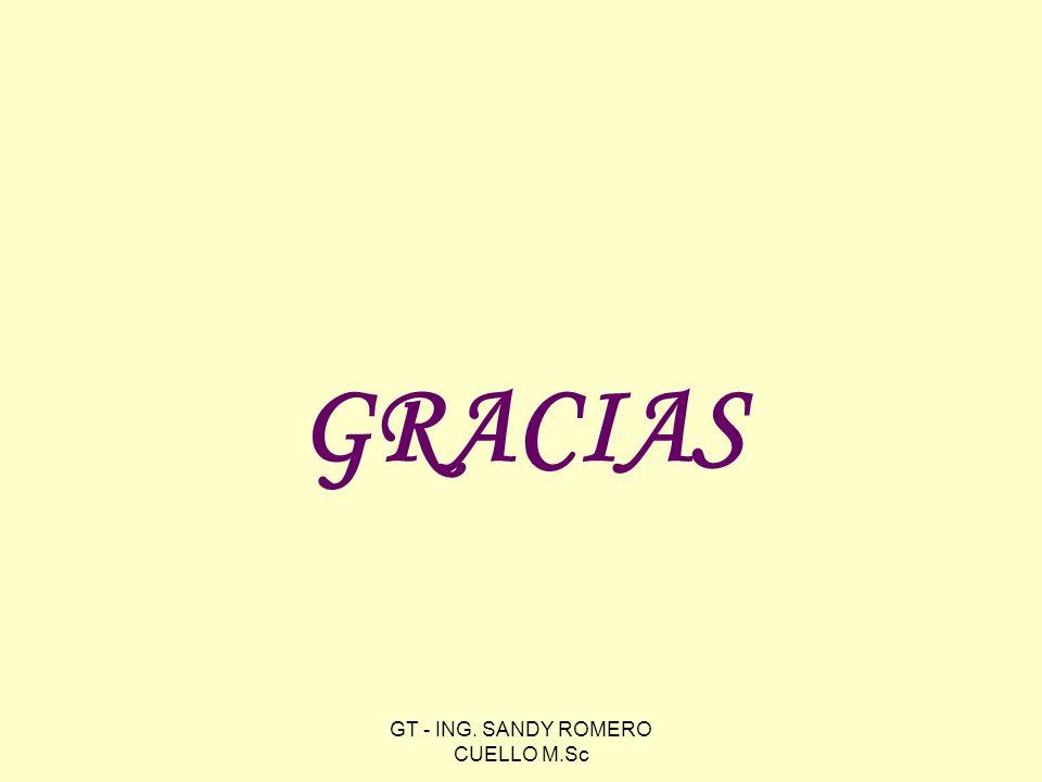 GRACIAS GT - ING. SANDY ROMERO CUELLO M.Sc