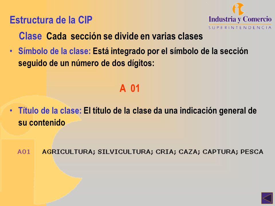 Estructura de la CIP Subclase Cada clase se divide en una o varias subclases Símbolo de la subclase: Está integrado por el símbolo de la clase seguido de una letra mayúscula: A 01B Título de la subclase: El título de la subclase indica su contenido de manera más exacta: