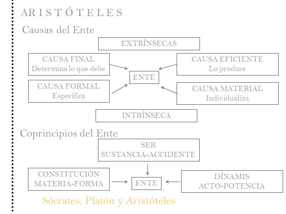Sócrates, Platón y Aristóteles AR I S T Ó T E L E S EXTRÍNSECAS CAUSA FINAL Determina lo que debe CAUSA EFICIENTE Lo produce ENTE Causas del Ente CAUS