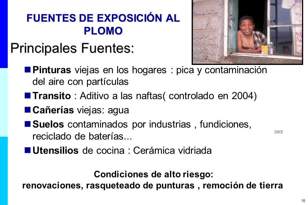 18 FUENTES DE EXPOSICIÓN AL PLOMO Principales Fuentes: Pinturas viejas en los hogares : pica y contaminación del aire con partículas Transito : Aditiv