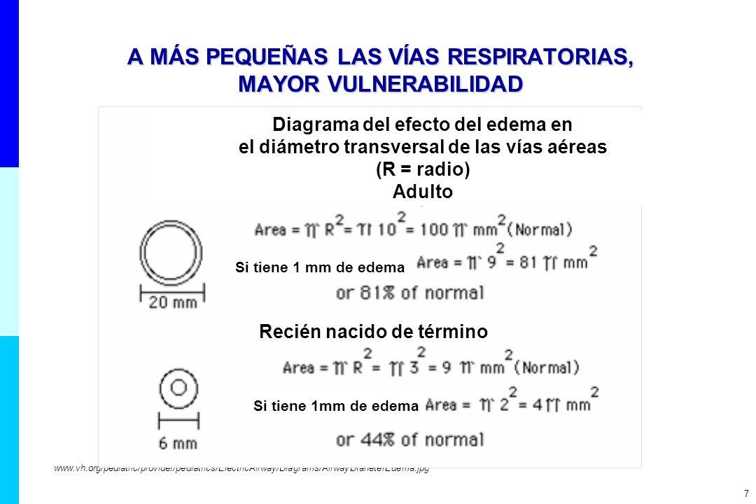 7 A MÁS PEQUEÑAS LAS VÍAS RESPIRATORIAS, MAYOR VULNERABILIDAD www.vh.org/pediatric/provider/pediatrics/ElectricAirway/Diagrams/AirwayDIaneterEdema.jpg