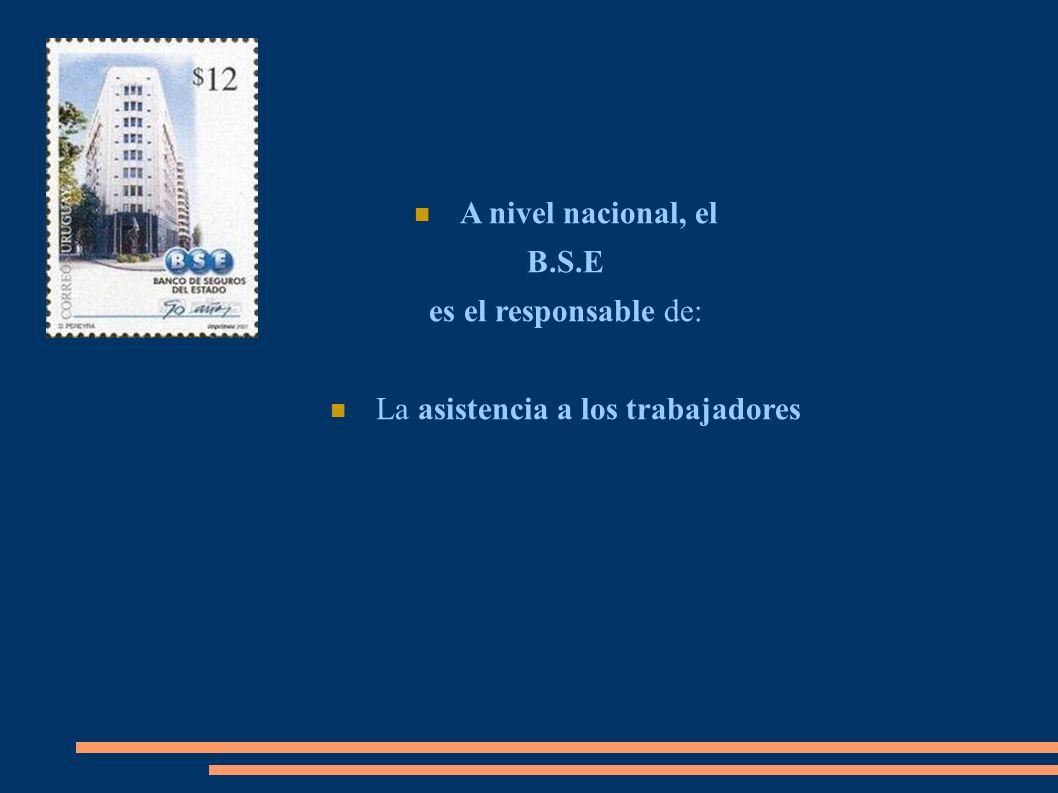 A nivel nacional, el B.S.E es el responsable de: La asistencia a los trabajadores