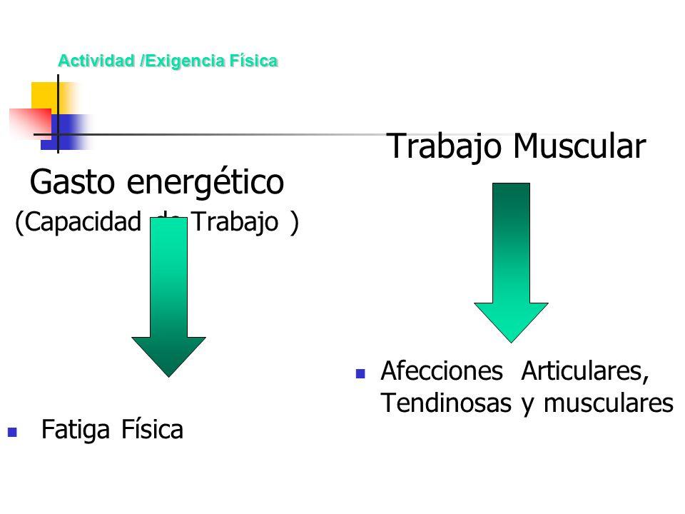 Actividad /Exigencia Física Gasto energético (Capacidad de Trabajo ) Fatiga Física Trabajo Muscular Afecciones Articulares, Tendinosas y musculares