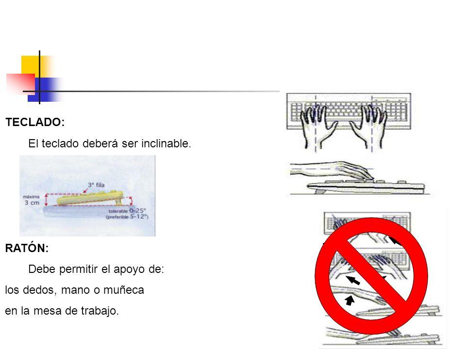 TECLADO: El teclado deberá ser inclinable. RATÓN: Debe permitir el apoyo de: los dedos, mano o muñeca en la mesa de trabajo.
