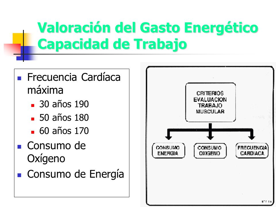 Valoración del Gasto Energético Capacidad de Trabajo Frecuencia Cardíaca máxima 30 años 190 50 años 180 60 años 170 Consumo de Oxígeno Consumo de Ener