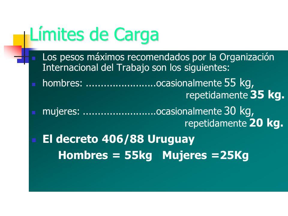Límites de Carga Los pesos máximos recomendados por la Organización Internacional del Trabajo son los siguientes: hombres:........................ocas
