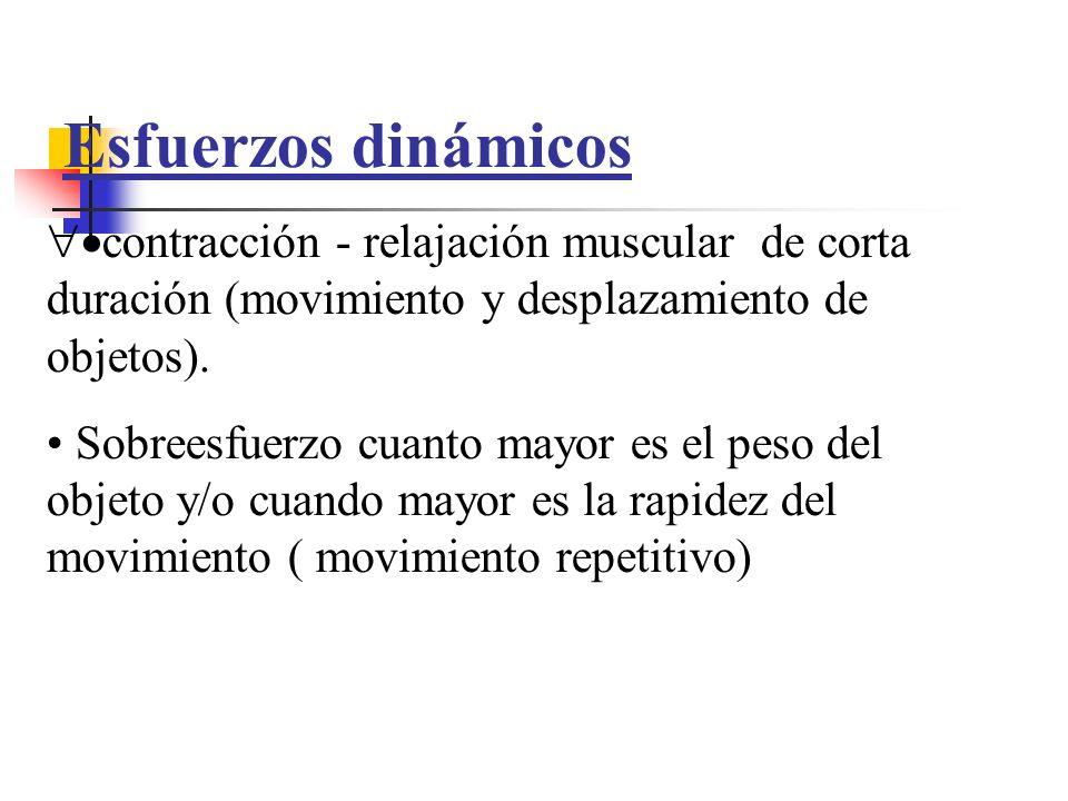 Esfuerzos dinámicos contracción - relajación muscular de corta duración (movimiento y desplazamiento de objetos). Sobreesfuerzo cuanto mayor es el pes