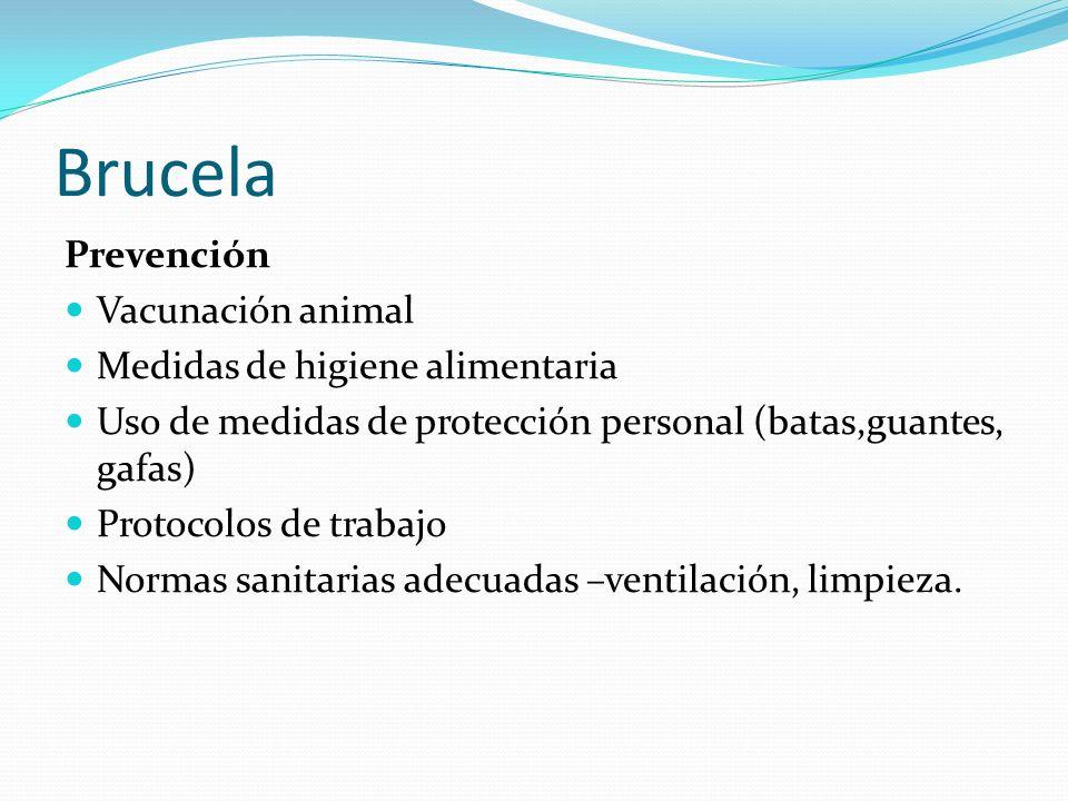 Brucela Prevención Vacunación animal Medidas de higiene alimentaria Uso de medidas de protección personal (batas,guantes, gafas) Protocolos de trabajo