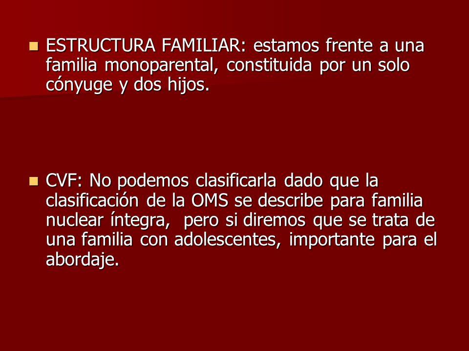 ESTRUCTURA FAMILIAR: estamos frente a una familia monoparental, constituida por un solo cónyuge y dos hijos. ESTRUCTURA FAMILIAR: estamos frente a una