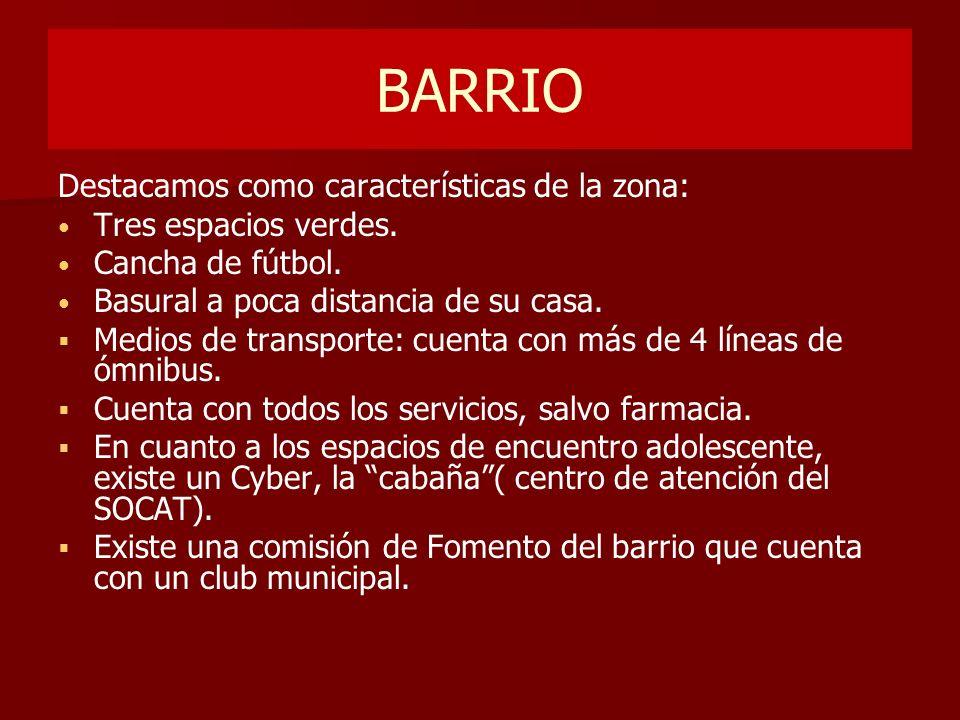 BARRIO Destacamos como características de la zona: Tres espacios verdes. Cancha de fútbol. Basural a poca distancia de su casa. Medios de transporte: