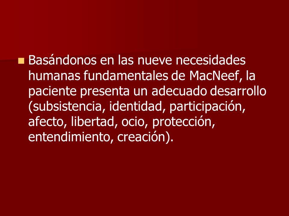 Basándonos en las nueve necesidades humanas fundamentales de MacNeef, la paciente presenta un adecuado desarrollo (subsistencia, identidad, participac