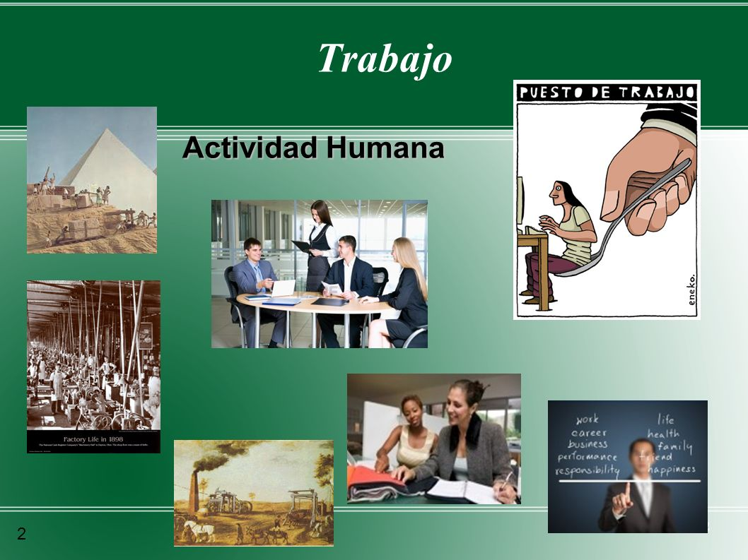 2 Trabajo Actividad Humana 2