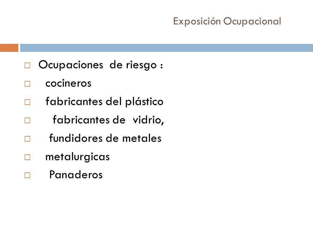 Exposición Ocupacional Ocupaciones de riesgo : cocineros fabricantes del plástico fabricantes de vidrio, fundidores de metales metalurgicas Panaderos