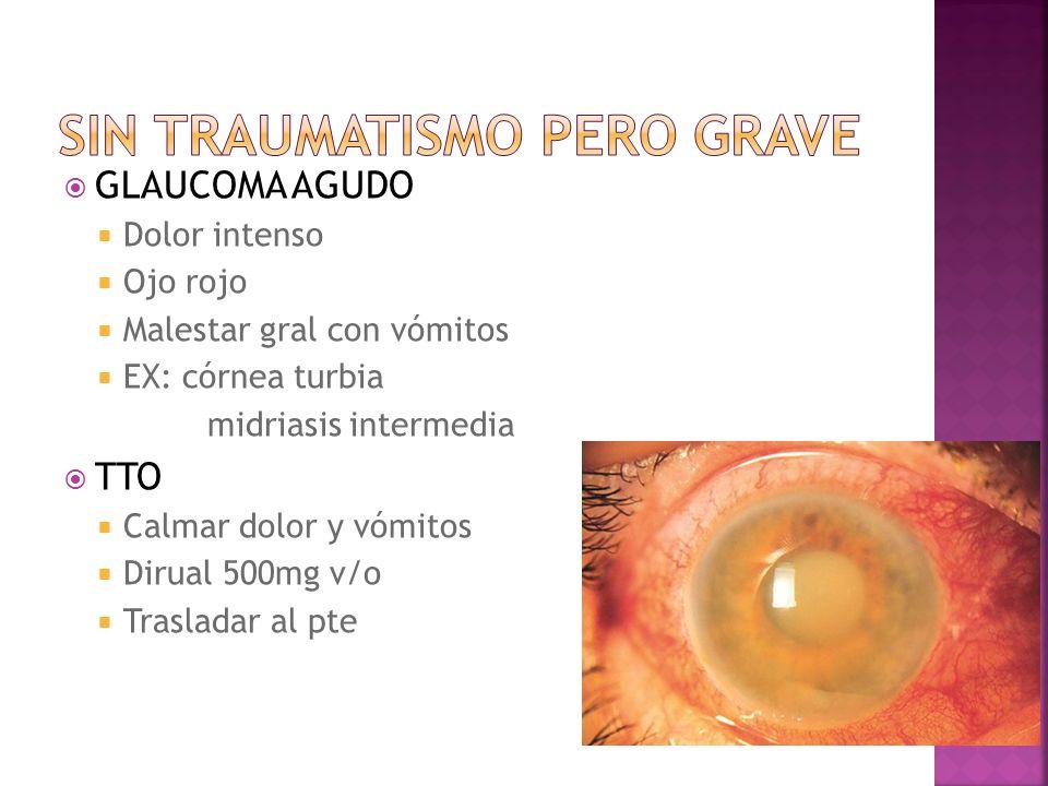 GLAUCOMA AGUDO Dolor intenso Ojo rojo Malestar gral con vómitos EX: córnea turbia midriasis intermedia TTO Calmar dolor y vómitos Dirual 500mg v/o Tra