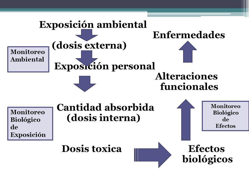 Exposición ambiental Enfermedades (dosis externa) Exposición personal Alteraciones funcionales Cantidad absorbida (dosis interna) Dosis toxica Efectos
