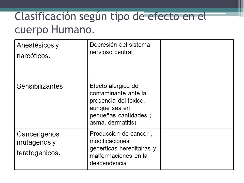 Clasificación según tipo de efecto en el cuerpo Humano. Produccion de cancer, modificaciones generticas hereditairas y malformaciones en la descendenc