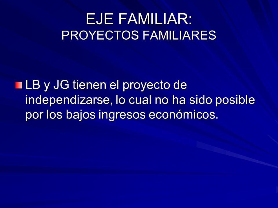 EJE FAMILIAR: PROYECTOS FAMILIARES LB y JG tienen el proyecto de independizarse, lo cual no ha sido posible por los bajos ingresos económicos.