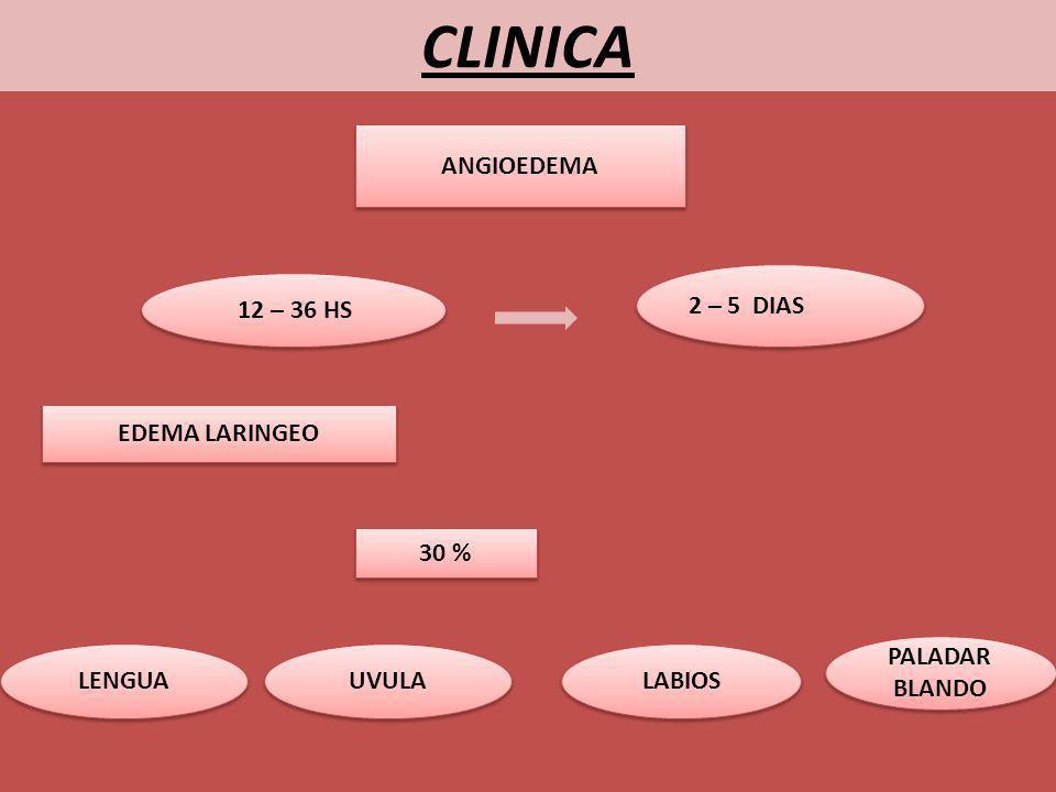 CLINICA ANGIOEDEMA 12 – 36 HS 2 – 5 DIAS EDEMA LARINGEO 30 % LENGUA UVULA LABIOS PALADAR BLANDO PALADAR BLANDO