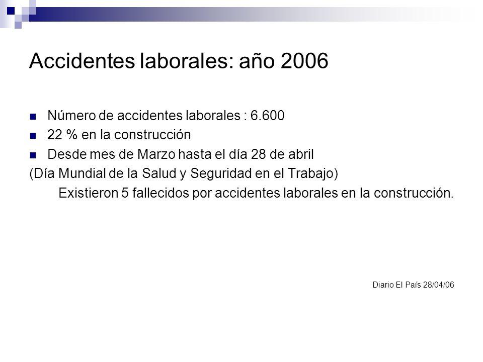 Accidentes laborales: año 2006 Número de accidentes laborales : 6.600 22 % en la construcción Desde mes de Marzo hasta el día 28 de abril (Día Mundial