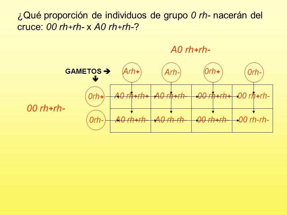 Problema 6 El grupo sanguíneo en el hombre viene determinado por tres alelos de un gen: A y B son codominantes y O recesivo respecto a ellos. El facto