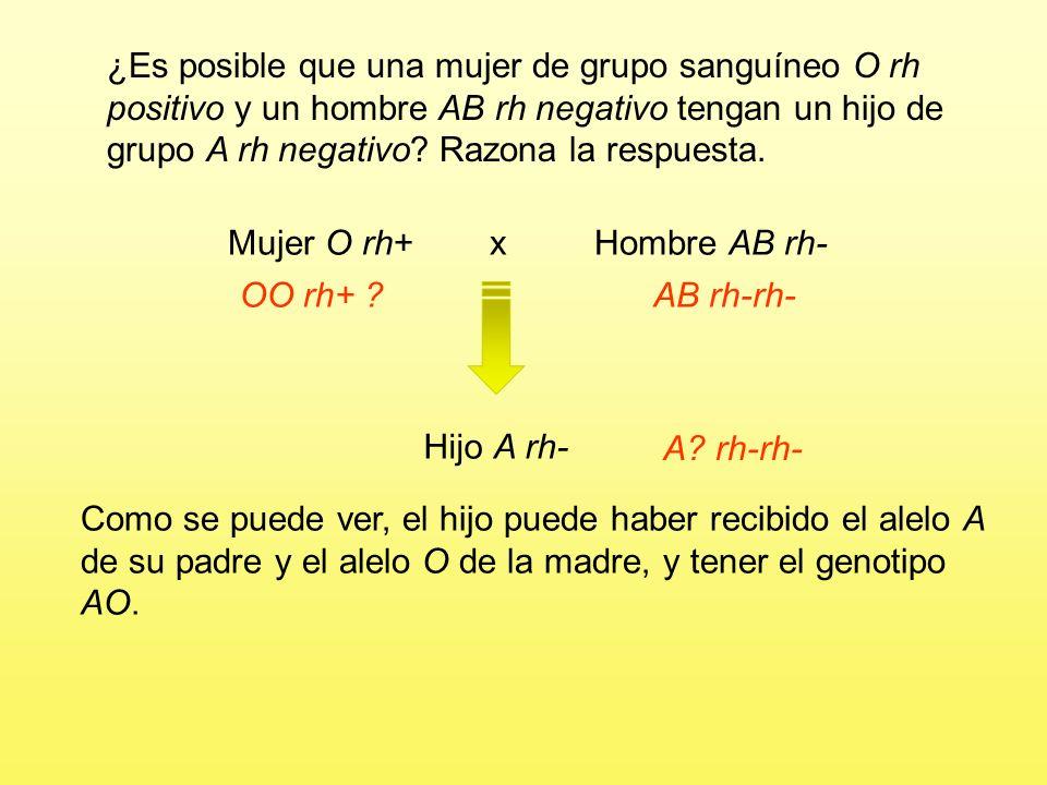 Mujer O rh+ x Hombre AB rh- OO rh+ ? Hijo A rh- Si tuvieran un hijo de grupo A rh negativo, podría ser homo- cigoto o heterocigoto para el grupo (AA o