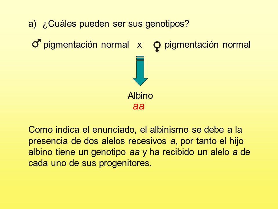 En el hombre, el albinismo (falta de pigmentación) es el resultado de dos alelos recesivos, a, y la pigmentación, carácter normal, viene determinada por el alelo domi- nante A.