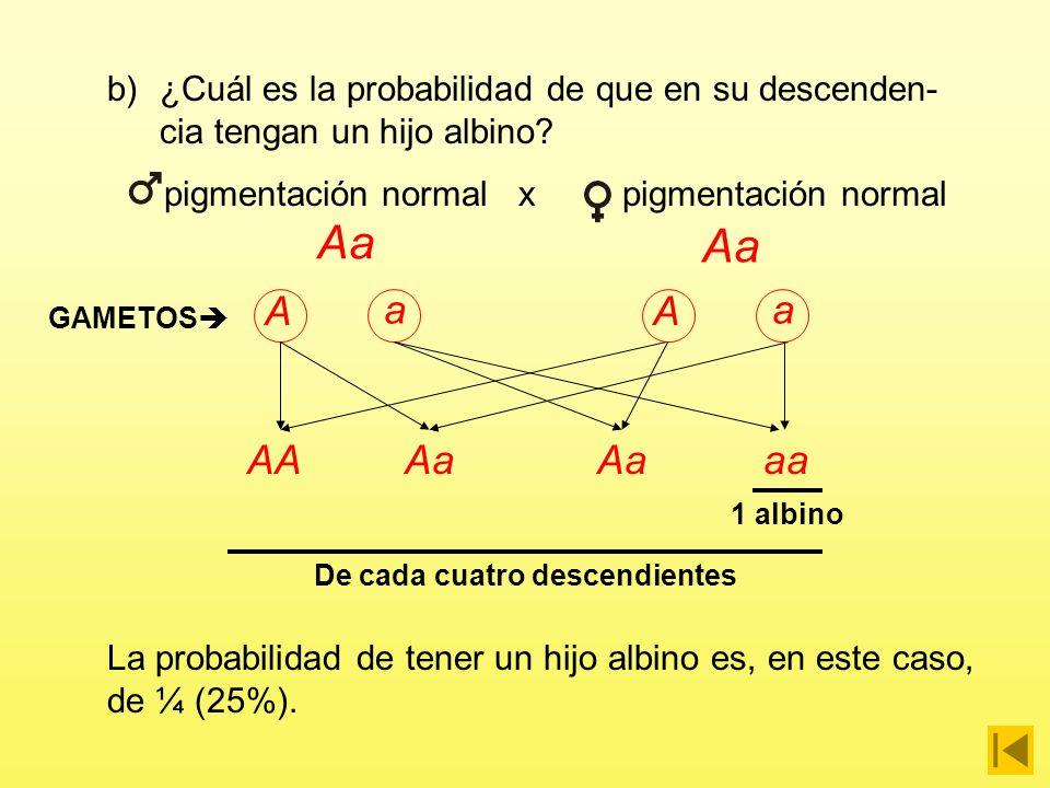 a)¿Cuáles pueden ser sus genotipos.