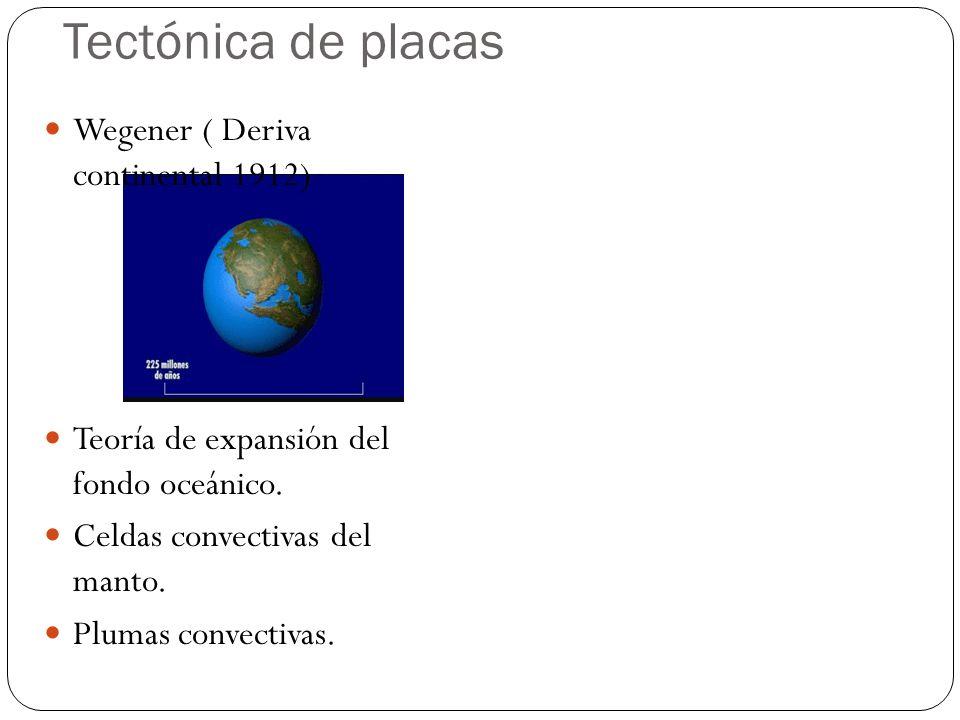 Tectónica de placas Wegener ( Deriva continental 1912) Teoría de expansión del fondo oceánico. Celdas convectivas del manto. Plumas convectivas.