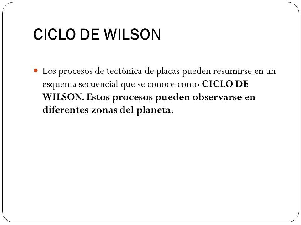 CICLO DE WILSON Los procesos de tectónica de placas pueden resumirse en un esquema secuencial que se conoce como CICLO DE WILSON. Estos procesos puede