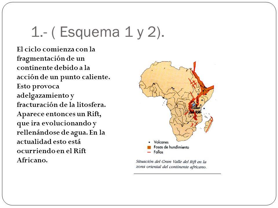 1.- ( Esquema 1 y 2). El ciclo comienza con la fragmentación de un continente debido a la acción de un punto caliente. Esto provoca adelgazamiento y f