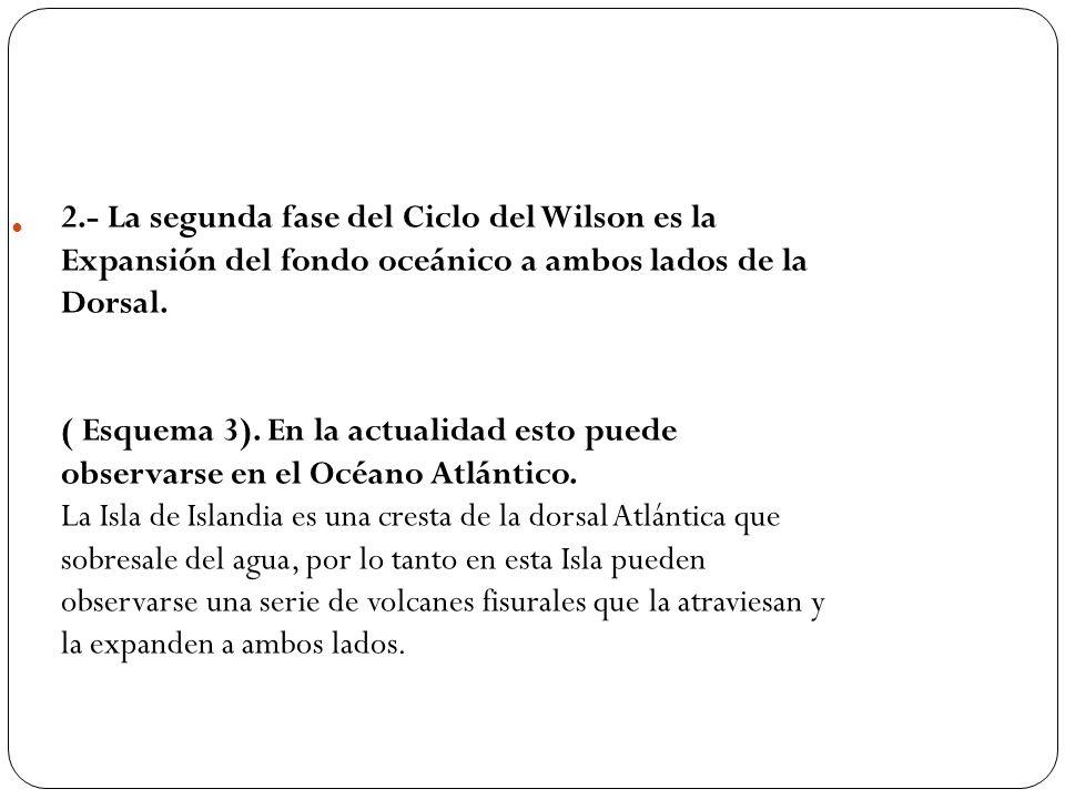 2.- La segunda fase del Ciclo del Wilson es la Expansión del fondo oceánico a ambos lados de la Dorsal. ( Esquema 3). En la actualidad esto puede obse