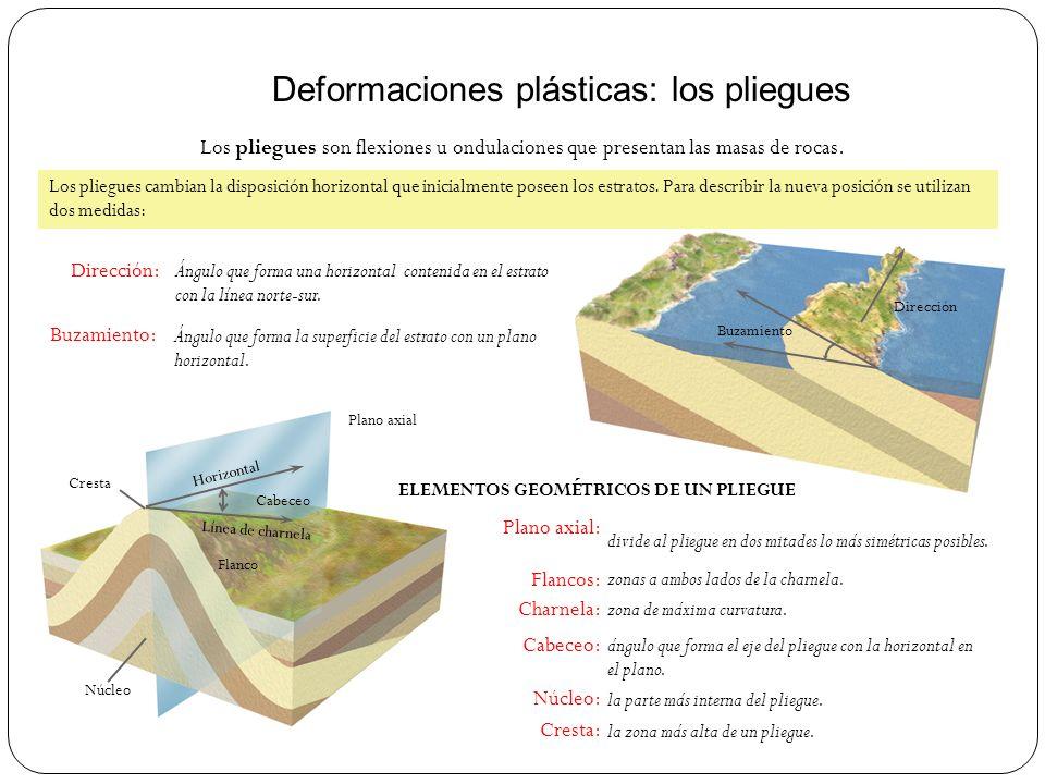 Deformaciones plásticas: los pliegues Los pliegues son flexiones u ondulaciones que presentan las masas de rocas. Dirección: Buzamiento: Ángulo que fo
