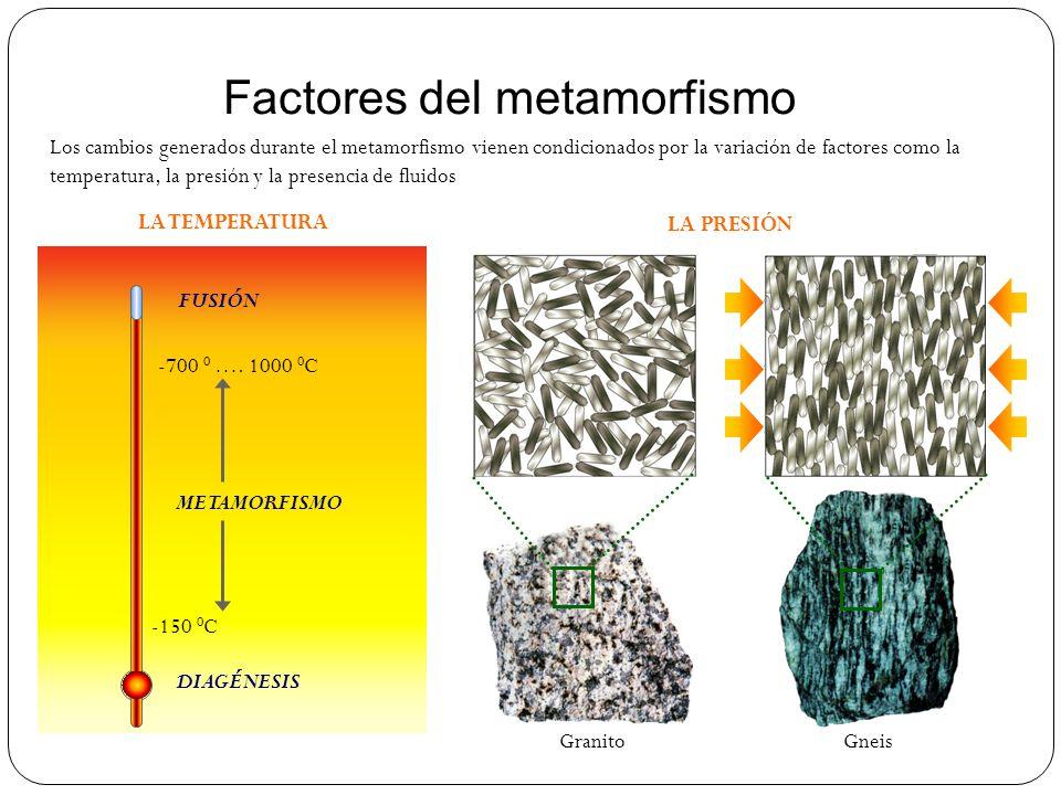 Gneis Factores del metamorfismo DIAGÉNESIS FUSIÓN -150 0 C -700 0 …. 1000 0 C METAMORFISMO LA TEMPERATURA LA PRESIÓN Granito Los cambios generados dur