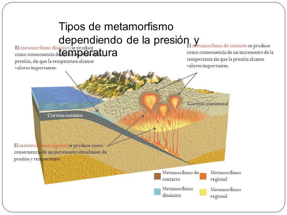 Tipos de metamorfismo dependiendo de la presión y temperatura Metamorfismo de contacto Metamorfismo dinámico Metamorfismo regional Corteza oceánica Co