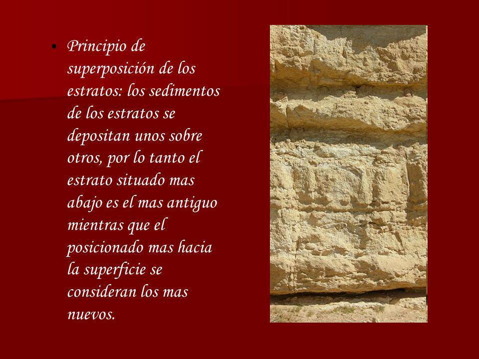 Principio de superposición de los estratos: los sedimentos de los estratos se depositan unos sobre otros, por lo tanto el estrato situado mas abajo es