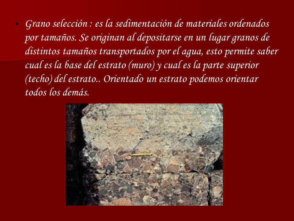 Grano selección : es la sedimentación de materiales ordenados por tamaños. Se originan al depositarse en un lugar granos de distintos tamaños transpor