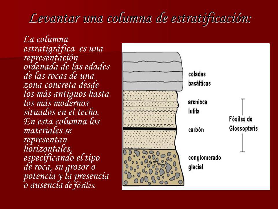 Levantar una columna de estratificación: La columna estratigráfica es una representación ordenada de las edades de las rocas de una zona concreta desd